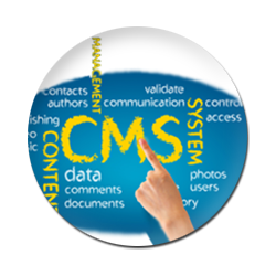 CMS Websites Development Noida, CMS Websites Designing Noida, CMS Websites Development Delhi